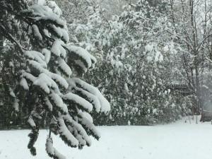 April 16 snow